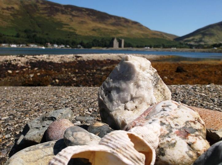 Lochranza shells